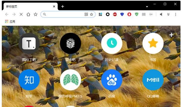 百分浏览器魔改公众版 V4.1.7.182 绿色版