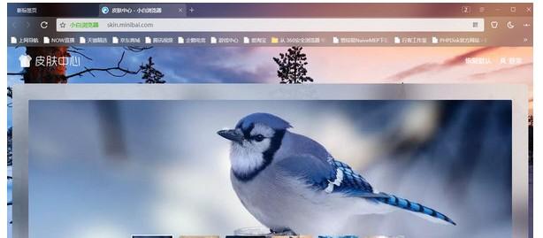 小白浏览器电脑版 V10.2.2801.1477 最新免费版
