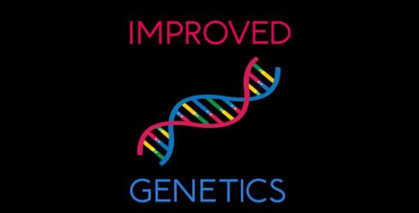 十字军之王3改良遗传学补