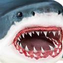 鲨鱼模拟器 V1.0.3 安卓版