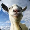 模拟山羊手机中文版 ,天龙