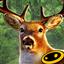 猎鹿人2014无限金币版 V2.9,雪的图片,.0 安卓版