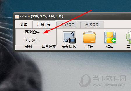 oCam录屏怎么调整视频质量 设置视频参数教程介绍