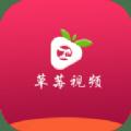 草莓视频app在线下载_免费免费版